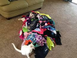 Clothes vomit